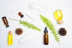 frotte avec les feuilles naturelles d'ingrédients sur le blanc Photos stock