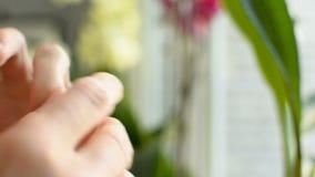 Frottement hydratant la lotion crème sur la peau irritante endommagée déshydratée de doigt clips vidéos