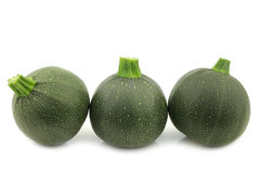 Frow of resh round zucchini's Stock Photos