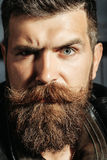 Frown bearded man hipster Royalty Free Stock Photos