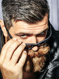 Frown bearded man hipster Royalty Free Stock Photography
