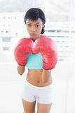 Frowning black haired woman wearing boxing gloves Stock Images