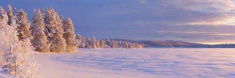 Frozen Äijäjärvi lake in Finnish Lapland in winter royalty free stock photos