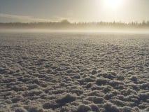 Frozen. Northern Winter sunrise, -26C celsius Stock Photos