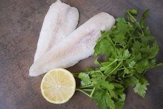Frozen Alaska Pollock fillet with lemon and parsley. Royalty Free Stock Photos