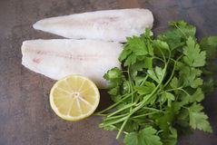 Frozen Alaska Pollock fillet with lemon and parsley. Royalty Free Stock Photo
