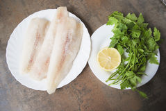 Frozen Alaska Pollock fillet with lemon and parsley on white plate. Stock Photography