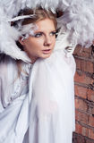 Frozen angel. Young beautiful and frightened female angel with feathers on her head wrapping herself in white cloth as if she feels frozen against brick wall Royalty Free Stock Image