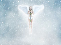 Frozen Angel Fairy Illustration Royalty Free Stock Images