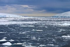 Frozen Antarctic bay Royalty Free Stock Images