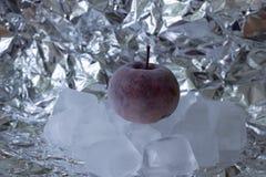 Apple. Frozen apple on ice cubes royalty free stock photo