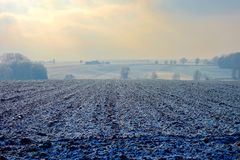 Frozen farmland and trees on cold hazy winter Stock Photography