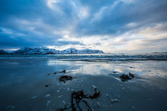 Frozen Arctic beach Stock Images