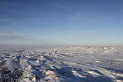 Frozen arctic landscape with snow on the ground Royalty Free Stock Images