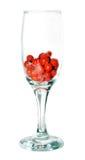 Frozen ash berries. Berries, frozen berries, ash berries Stock Photos