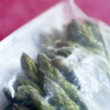 Frozen asparagus in a plastic bag Stock Image