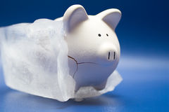 Frozen Assets. Ceramic piggy bank frozen in a solid block of ice. Blue vinyl background Stock Images