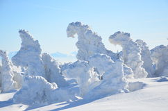 Frozen. Babia Hora frozen trees covered in snow Stock Photo