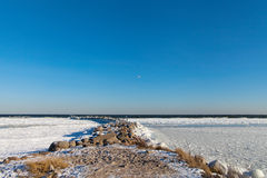 Frozen Baltic sea and biids.. Royalty Free Stock Image