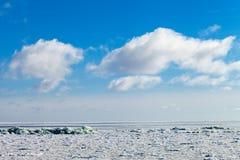 Frozen Baltic sea. Stock Image
