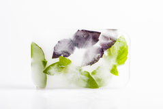 Frozen basil Stock Images