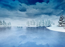 Frozen bay with trees and cloudy sky Stock Images