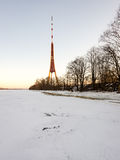 Frozen beach in cold winters day with TV tower in background Stock Images