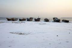 Frozen beach Royalty Free Stock Photography