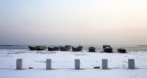 Frozen beach Stock Photography
