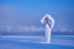 The frozen and become covered with hoarfrost post in a strong frost, Russia, Siberia Royalty Free Stock Photography
