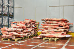Frozen beef carcasses are stacked on pallets for cold storage. Royalty Free Stock Images