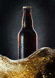Frozen  beer bottle Royalty Free Stock Image