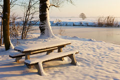 Frozen bench. A sunny winter day in Dutch landscape with bench covered in snow Royalty Free Stock Photos