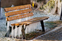Frozen bench. In a very cold winter day, nobody knows why, but the automatic spinklers went on for a few minutes. This is the result. The ice covered everything Royalty Free Stock Photography
