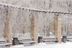 Frozen bench in the park. Frozen park winter day cold weather benches snow Stock Photography