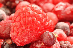 Frozen Berries Stock Photos