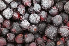 Frozen berries, Black Currant Royalty Free Stock Image