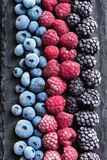 Frozen berries on black slate. Blueberry, raspberry, blackberry. Top view. High resolution product Stock Photos