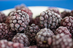 The frozen berries of blackberry Royalty Free Stock Photography