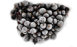 Frozen berries blackcurrant closeup Royalty Free Stock Images