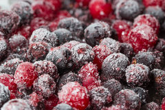 Frozen berries close-up Royalty Free Stock Photo
