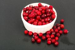 Frozen berries of cranberries in white bowl on black stone Stock Photos