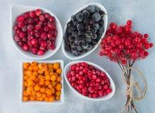 Frozen berries on a grey metallic background - aronia, cranberries, sea buckthorn, viburnum, cowberry Stock Photos