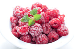 Frozen Berry Stock Images