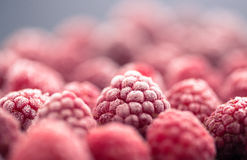 Frozen berry on black background Royalty Free Stock Photography