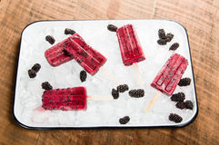 Frozen berry pops on tray of ice Stock Photo