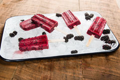 Frozen berry pops on tray of ice Royalty Free Stock Images