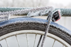 Frozen bike. Frozen mudguard by fog on a blue bicycle royalty free stock photo