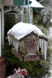 Frozen bird feeder Royalty Free Stock Photo