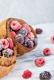 Frozen black and red raspberries in coconut bowl. Frozen black and red raspberries in coconut bowl Royalty Free Stock Photos